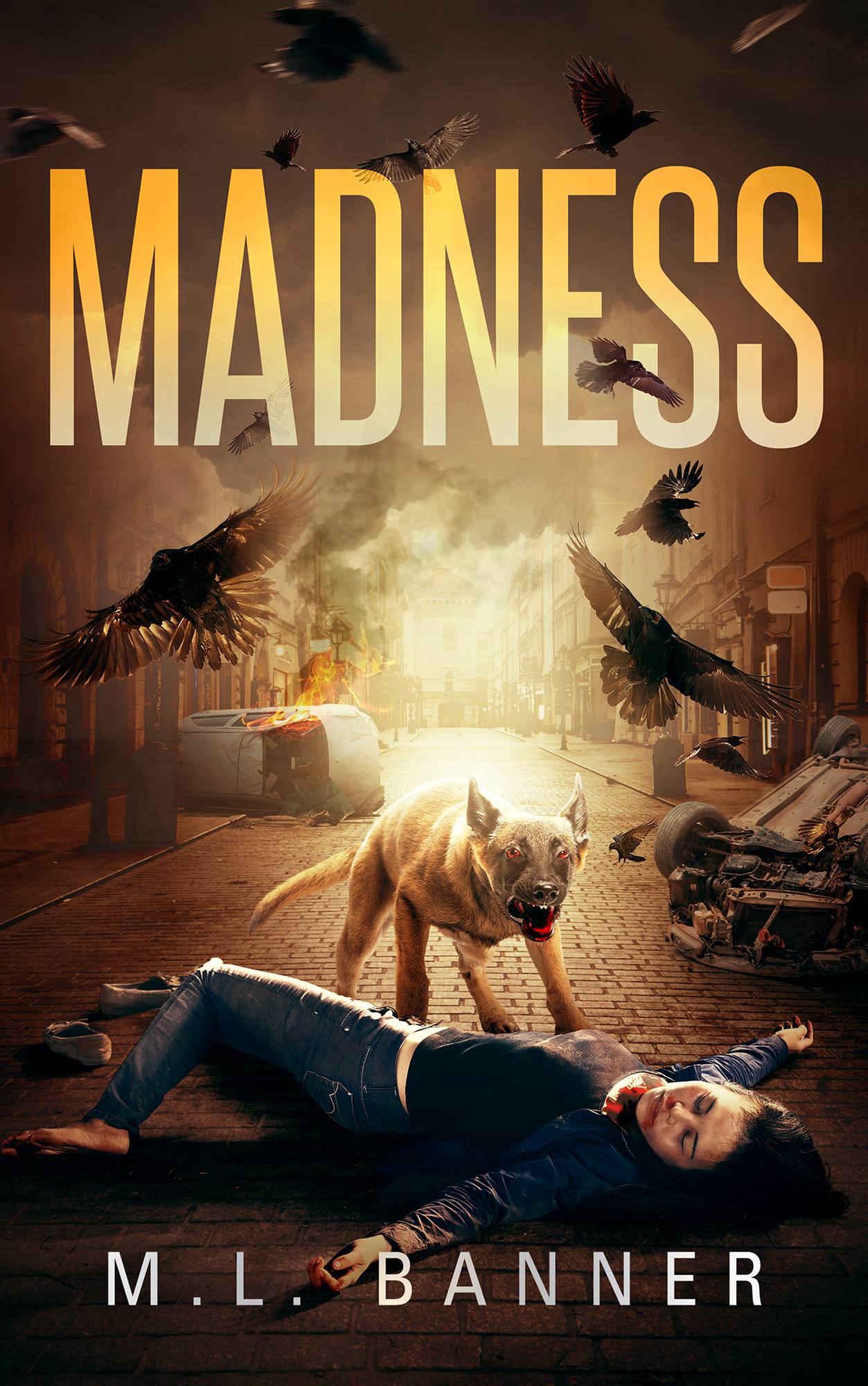 Madness Book 1 - Ebook Small
